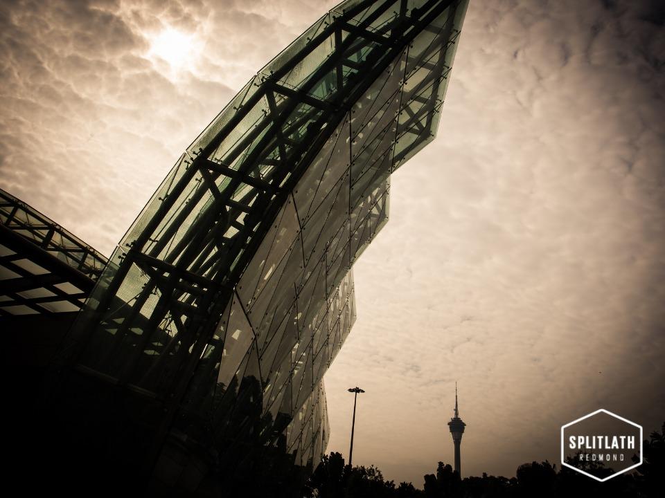 gallery-photo